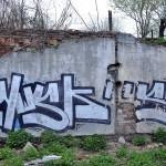 NWSK-caleaturzii