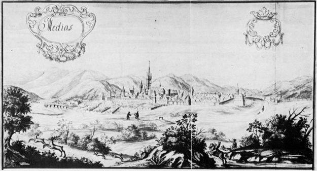 1666-Medias