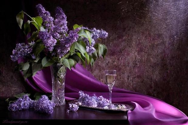 flori-de-liliac